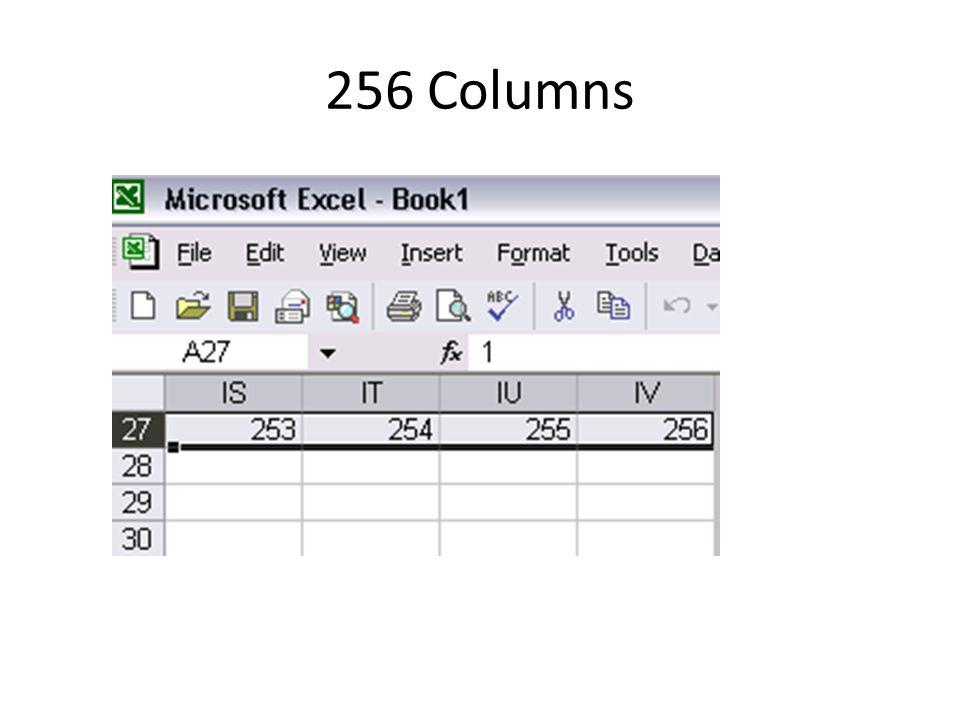 256 Columns