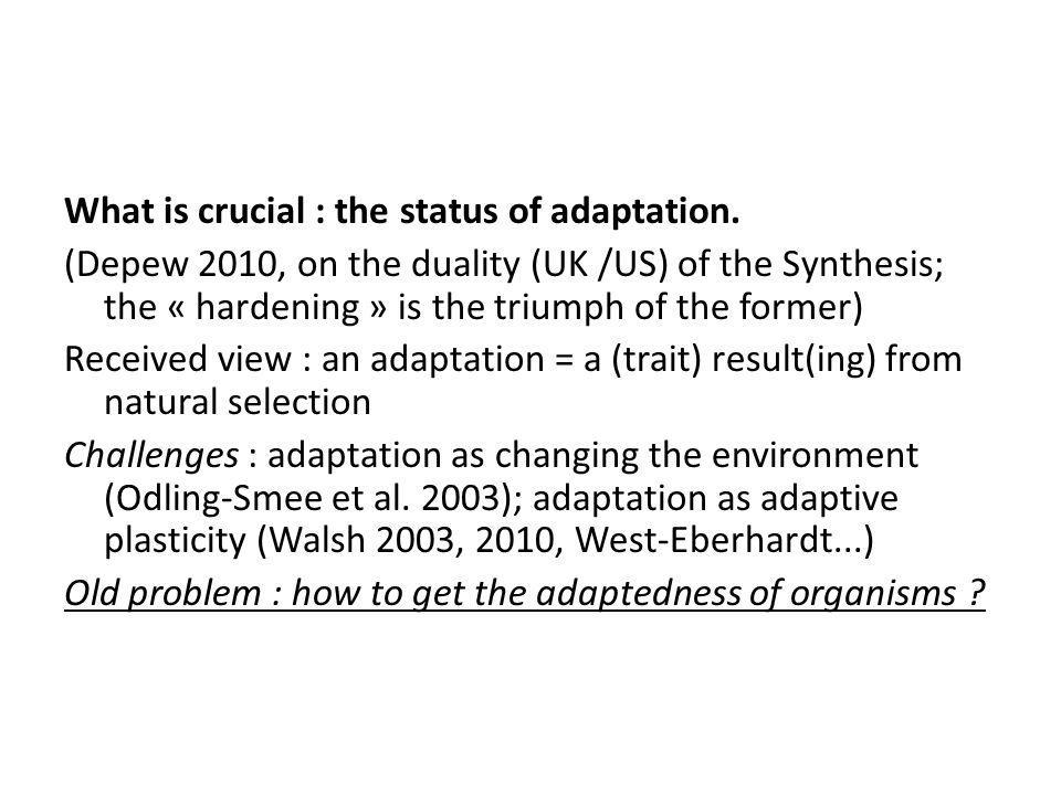 What is crucial : the status of adaptation.