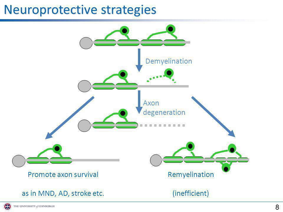 Demyelination Axon degeneration Remyelination (inefficient) Neuroprotective strategies Promote axon survival as in MND, AD, stroke etc. 8
