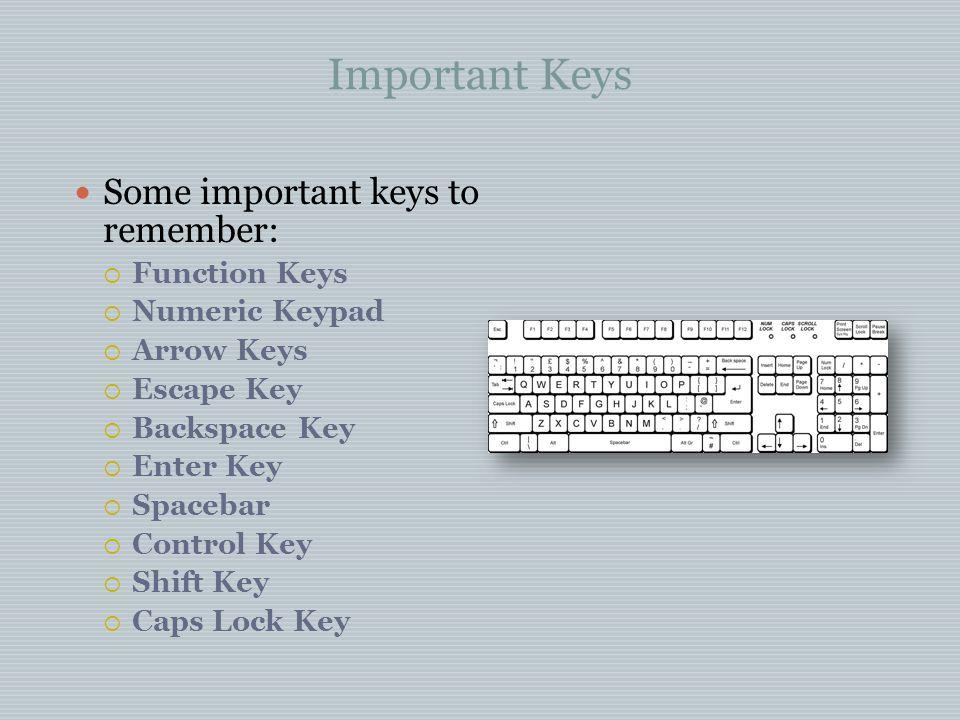 Important Keys Some important keys to remember:  Function Keys  Numeric Keypad  Arrow Keys  Escape Key  Backspace Key  Enter Key  Spacebar  Co