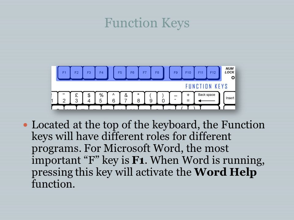 Function Keys Located at the top of the keyboard, the Function keys will have different roles for different programs.