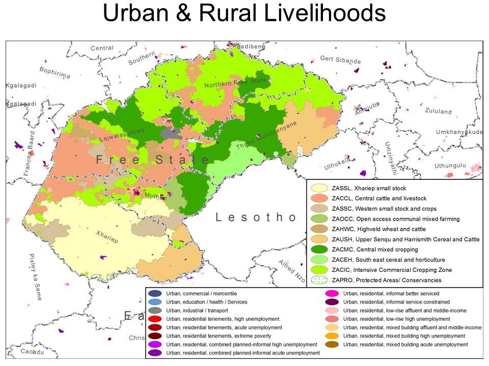 Urban & Rural Livelihoods