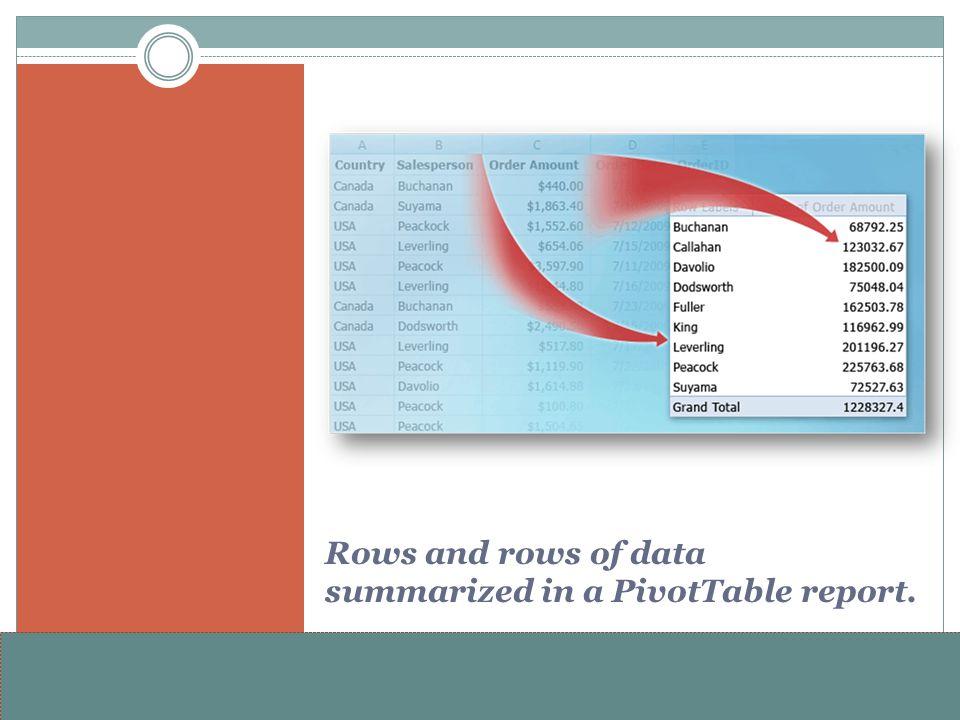 www.alterNativeMedia.biz© 2008 aNm – Michael Sheyahshe Rows and rows of data summarized in a PivotTable report.
