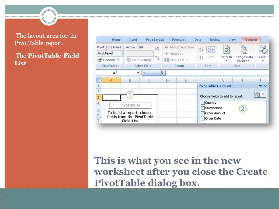 www.alterNativeMedia.biz© 2008 aNm – Michael Sheyahshe This is what you see in the new worksheet after you close the Create PivotTable dialog box. The