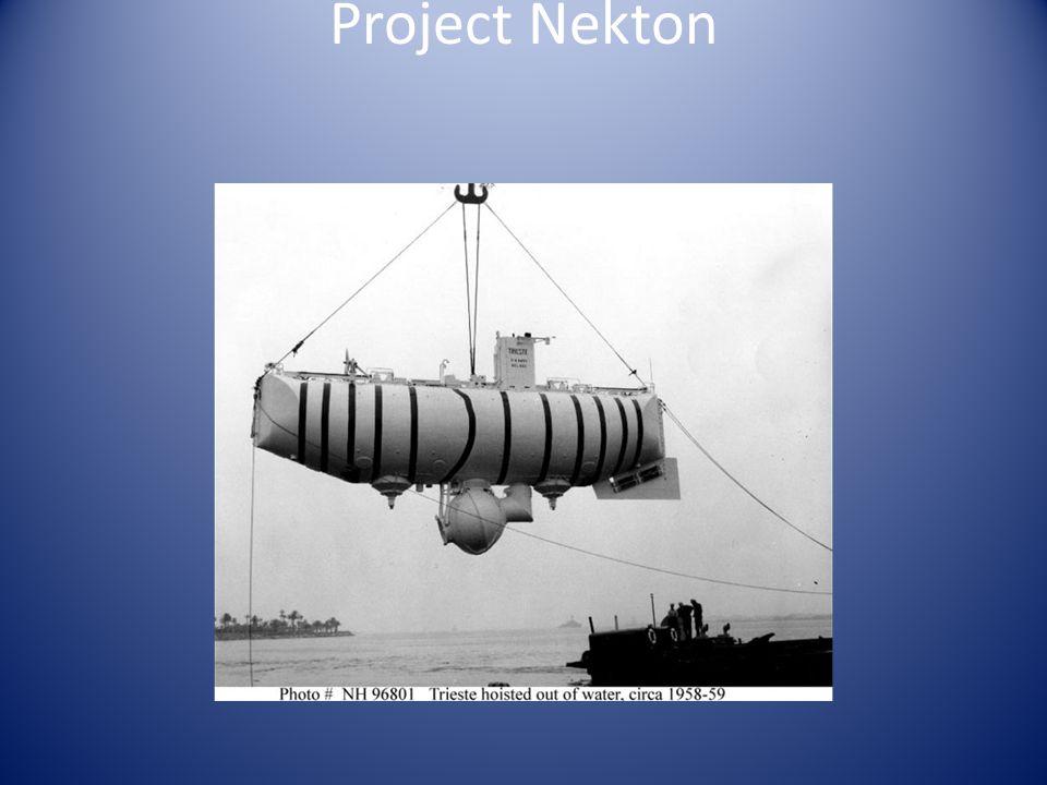Project Nekton