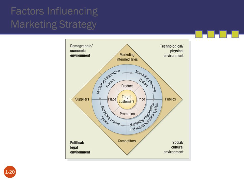 Factors Influencing Marketing Strategy 1-20