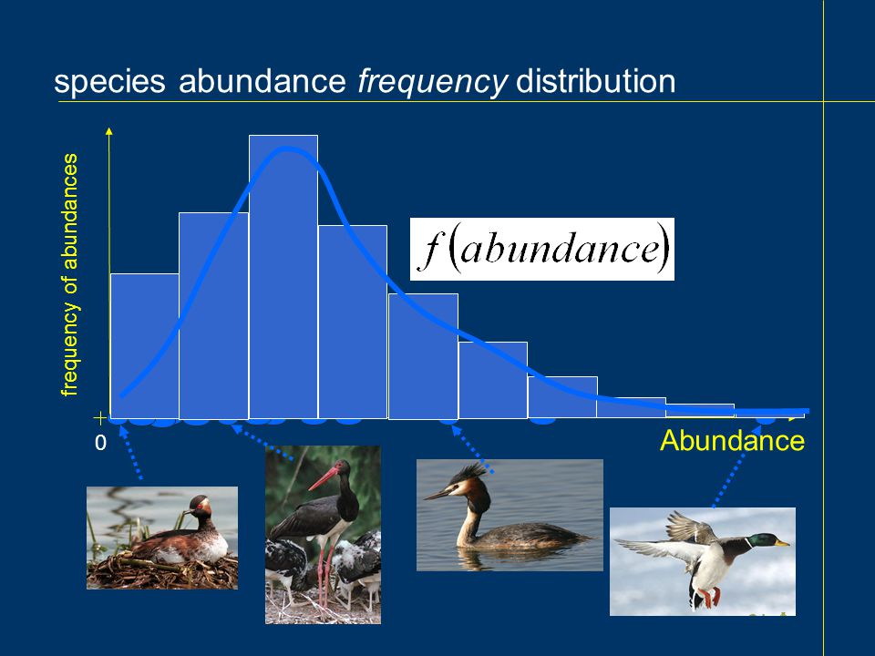 species abundance frequency distribution 0 Abundance frequency of abundances