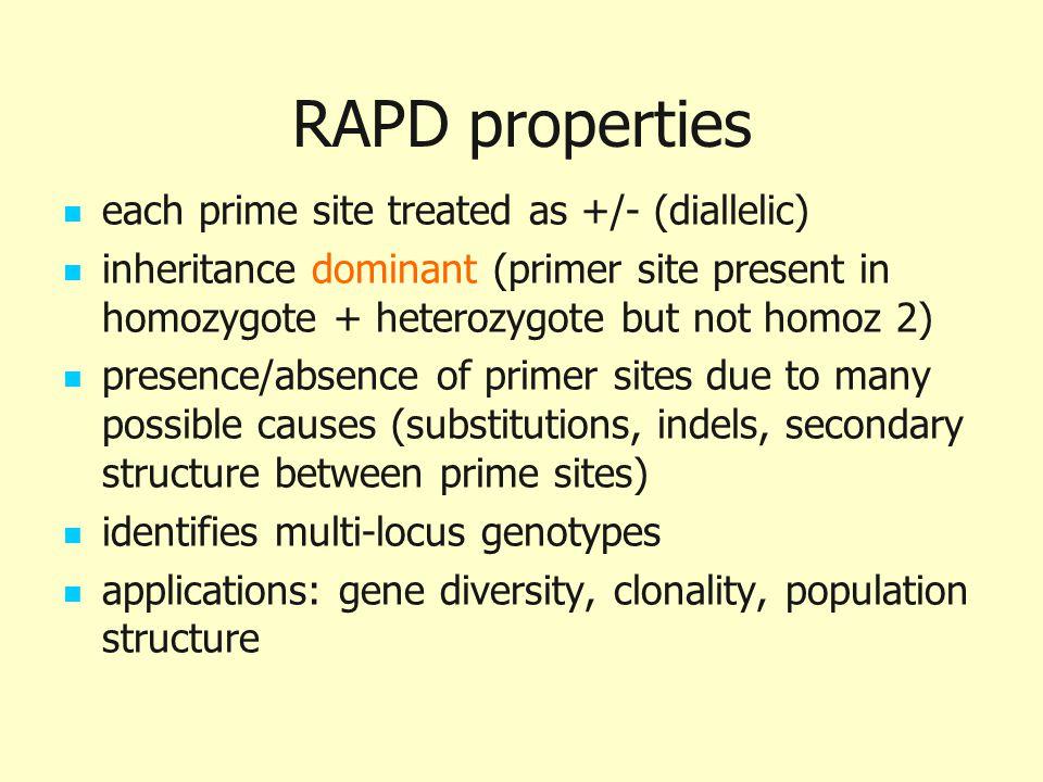 RAPD properties each prime site treated as +/- (diallelic) inheritance dominant (primer site present in homozygote + heterozygote but not homoz 2) pre