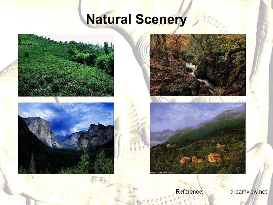 Natural Scenery Reference: dreamview.net