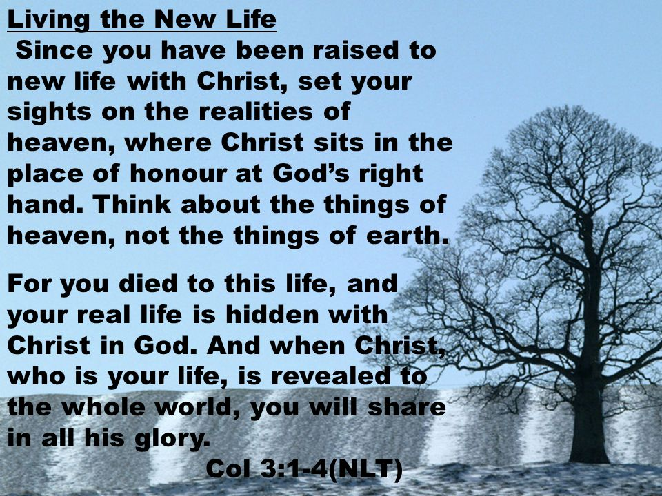Living the New Life Since you have been raised to new life with Christ, set your sights on the realities of heaven, where Christ sits in the place of honour at God's right hand.
