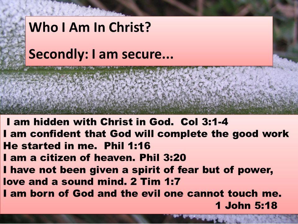 I am a branch of Jesus Christ, the true vine.