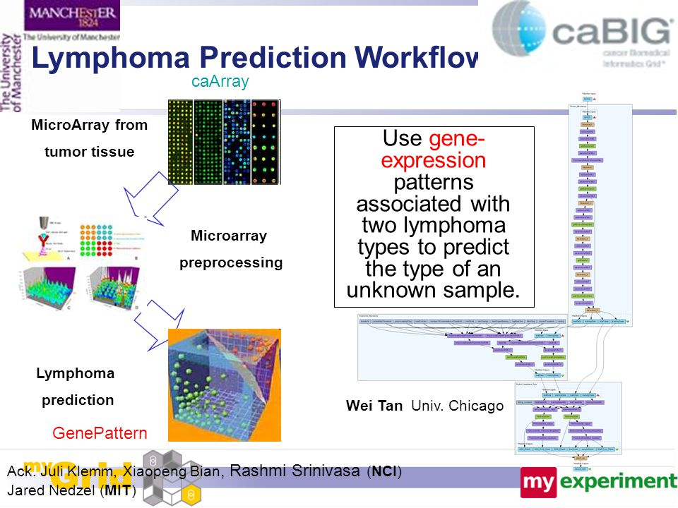 MicroArray from tumor tissue Microarray preprocessing Lymphoma prediction Lymphoma Prediction Workflow Wei Tan Univ. Chicago Ack. Juli Klemm, Xiaopeng