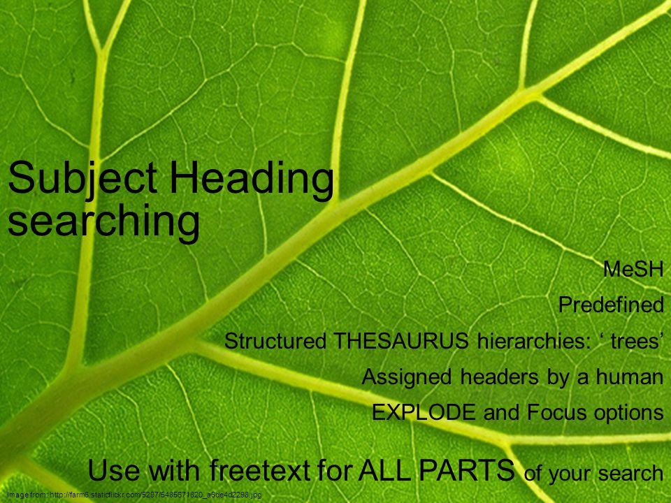 Subject Heading searching Image from: http://farm6.staticflickr.com/5297/5485671820_a6de4d2298.jpg MeSH Predefined Structured THESAURUS hierarchies: ' trees' Assigned headers by a human EXPLODE and Focus options Use with freetext for ALL PARTS of your search