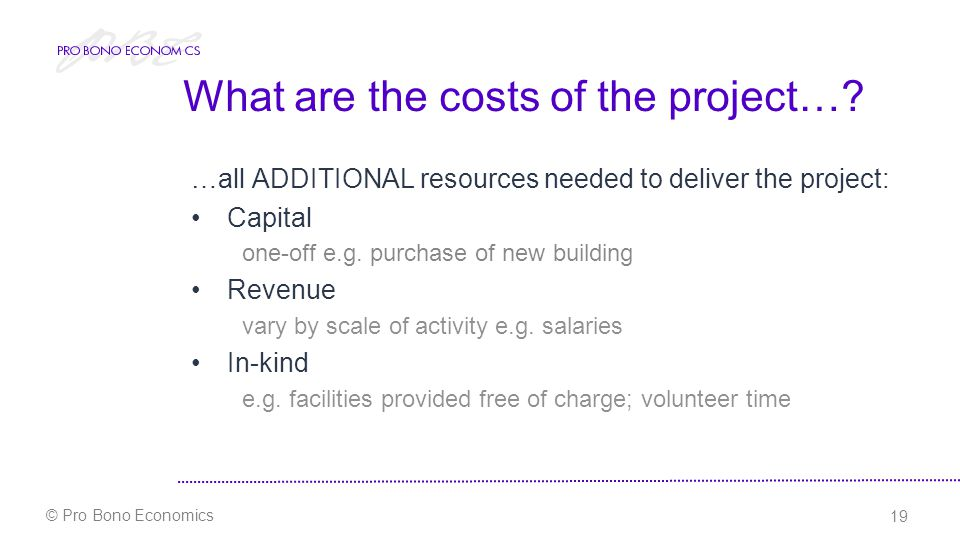 19 © Pro Bono Economics What are the costs of the project….
