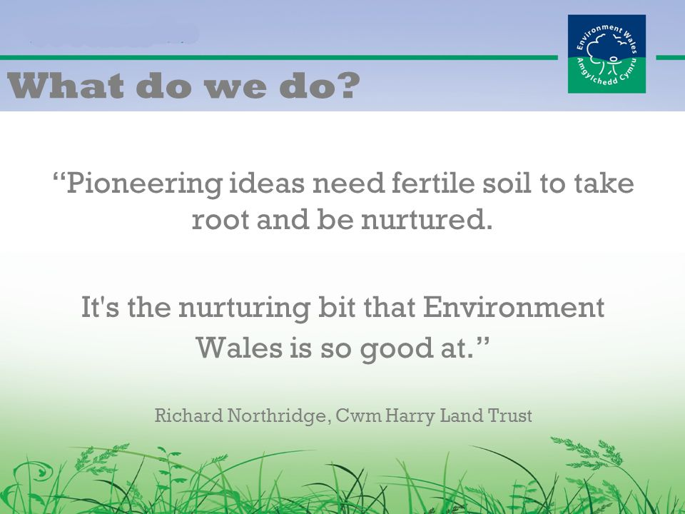 What do we do. Pioneering ideas need fertile soil to take root and be nurtured.