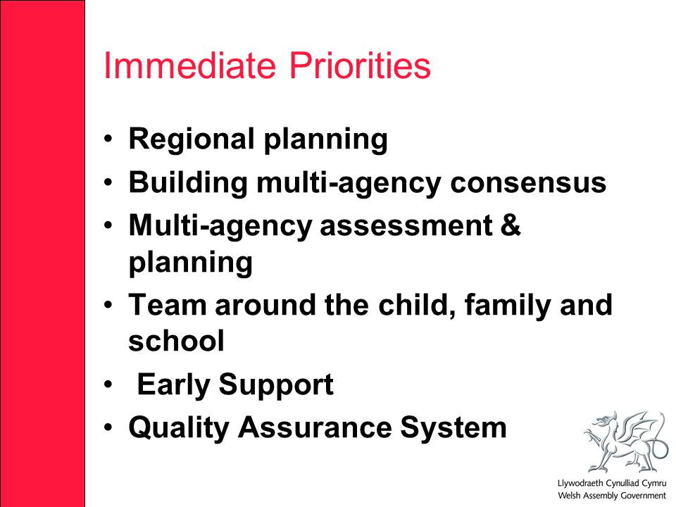 Immediate Priorities Regional planning Building multi-agency consensus Multi-agency assessment & planning Team around the child, family and school Early Support Quality Assurance System