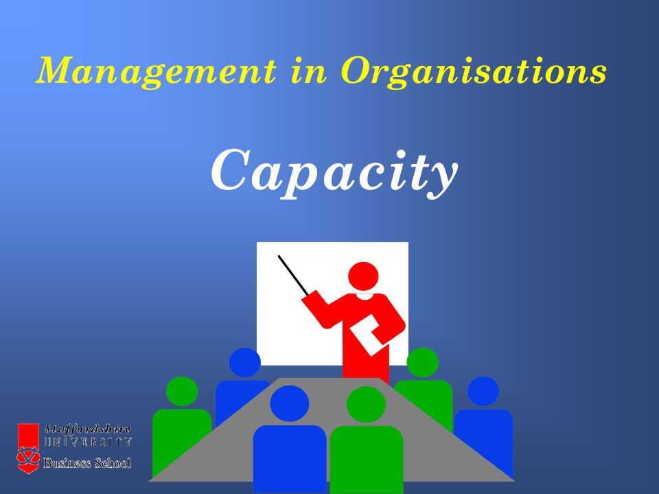 Management in Organisations Capacity