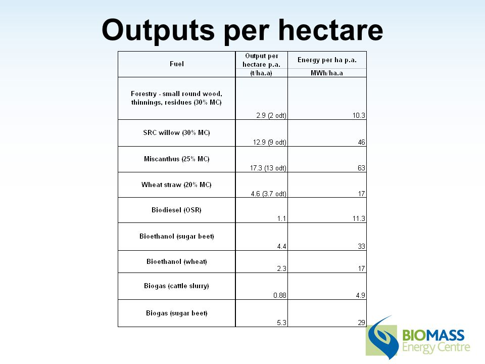 Outputs per hectare
