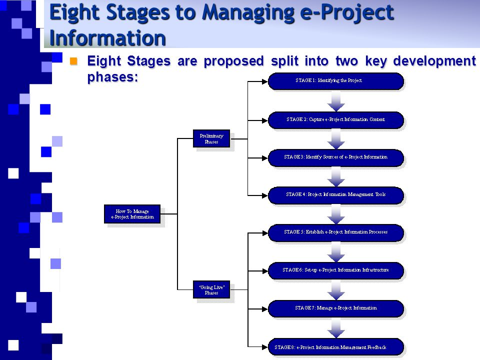 Preliminary e-Project Phases