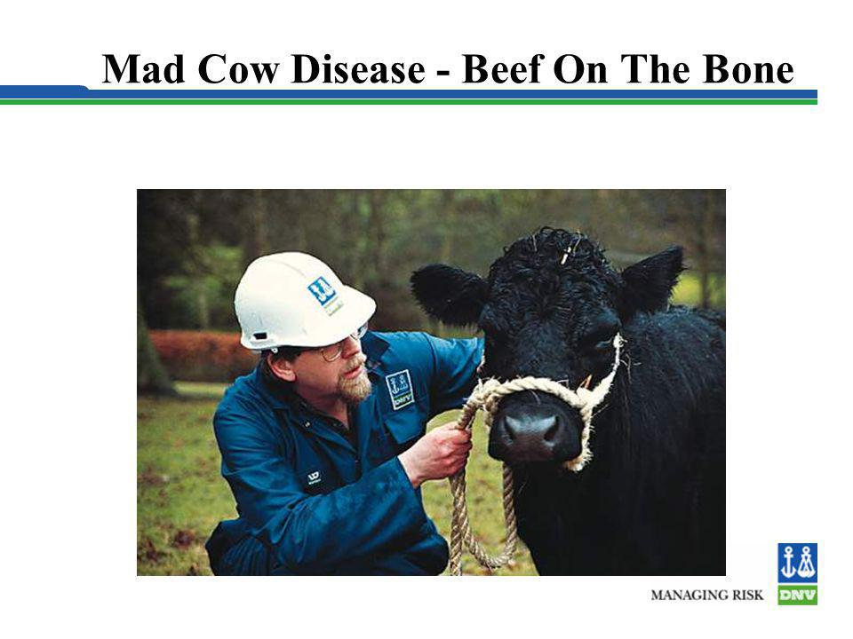 Mad Cow Disease - Beef On The Bone