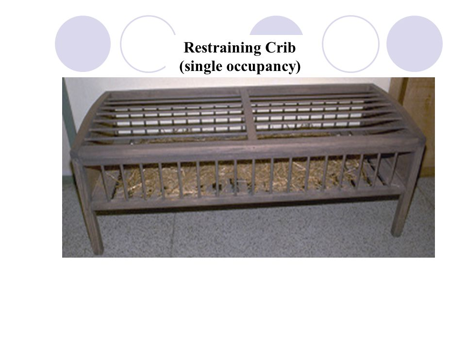 Restraining Crib (single occupancy)
