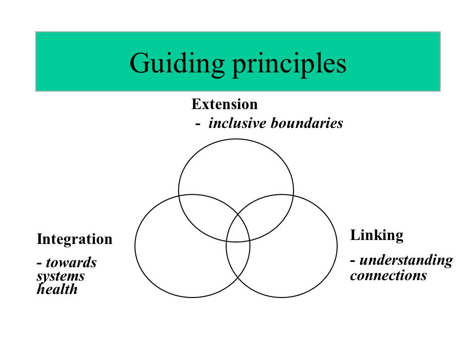 Guiding principles Extension - inclusive boundaries Linking - understanding connections Integration - towards systems health