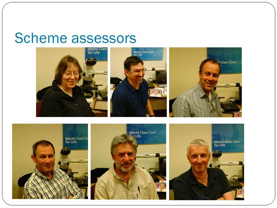 Scheme assessors