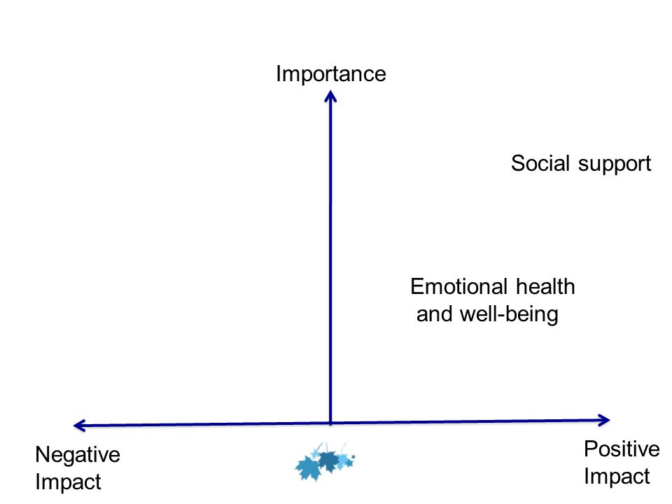 Social support Emotional health and well-being Importance Positive Impact Negative Impact