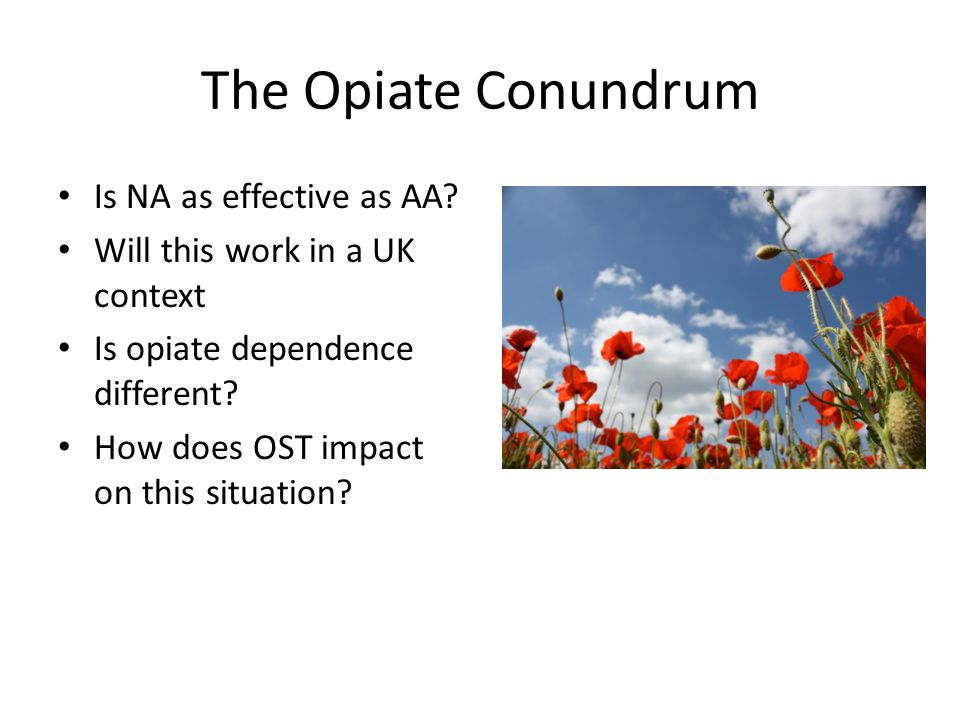 The Opiate Conundrum Is NA as effective as AA.