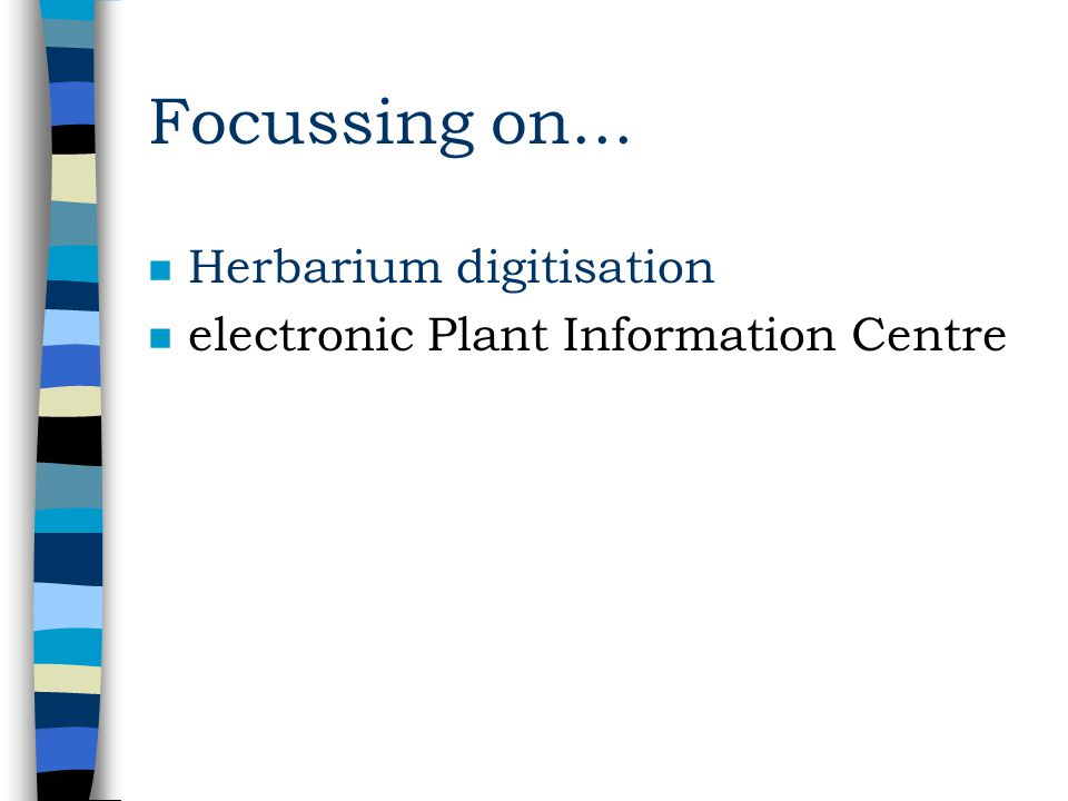 Kew Herbarium n Guesstimated –7 million specimens –250,000 types n Less than 5% specimens databased n A variety of personal databases