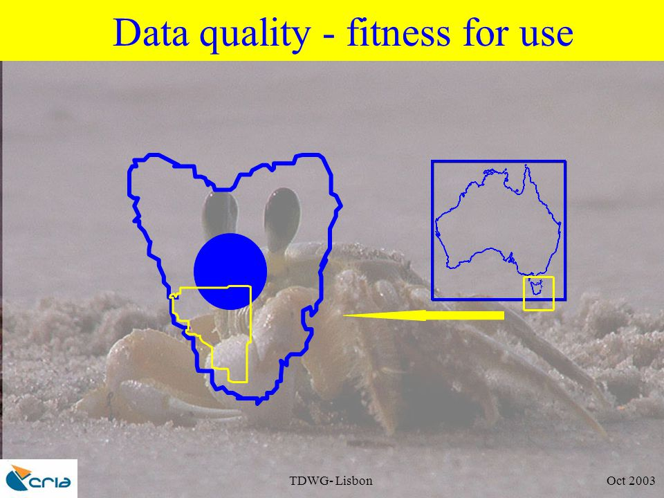 TDWG- Lisbon Oct 2003 Data quality - fitness for use