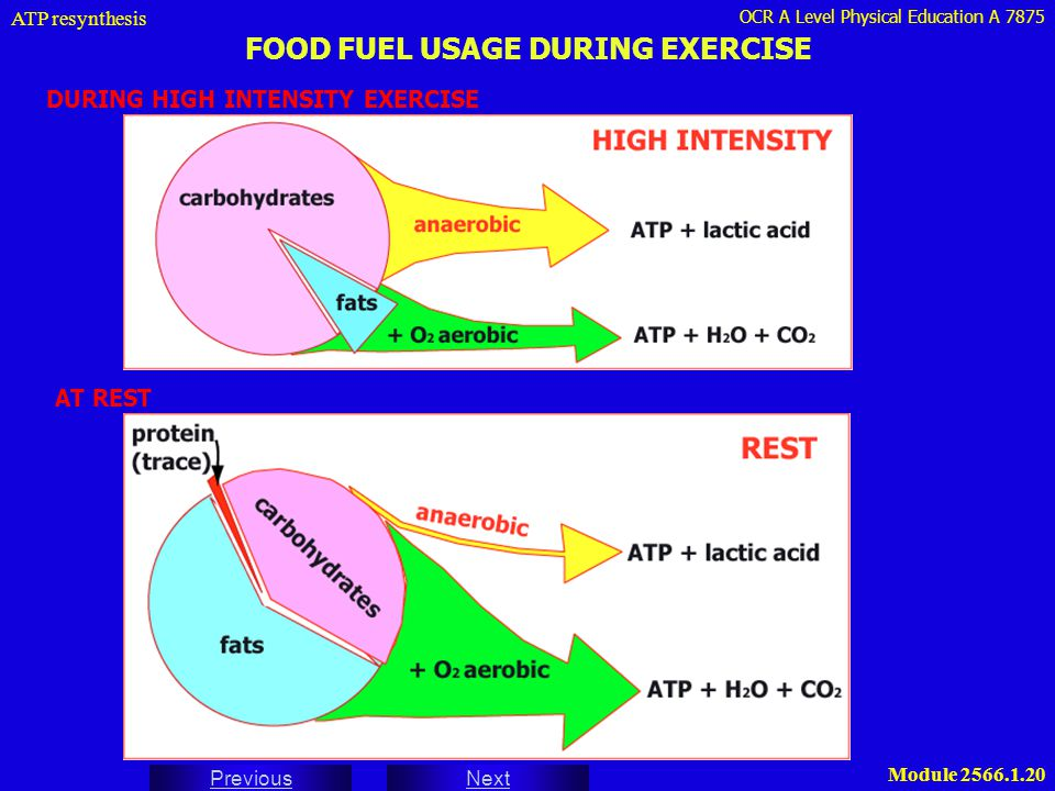 OCR A Level Physical Education A 7875 Next Previous Module 2566.1.20 FOOD FUEL USAGE DURING EXERCISE DURING HIGH INTENSITY EXERCISE ATP resynthesis AT