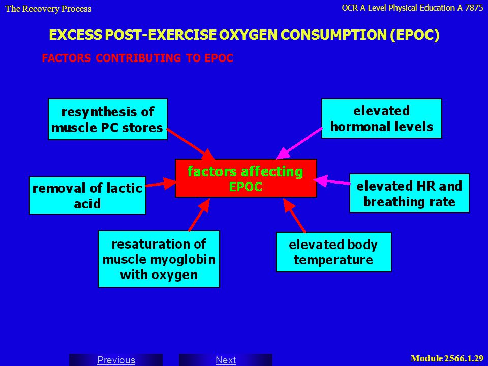 OCR A Level Physical Education A 7875 Next Previous Module 2566.1.29 EXCESS POST-EXERCISE OXYGEN CONSUMPTION (EPOC) FACTORS CONTRIBUTING TO EPOC The R