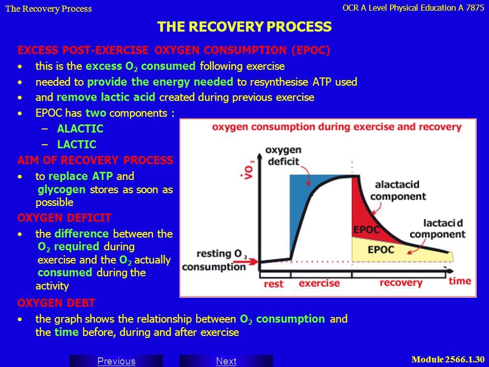 OCR A Level Physical Education A 7875 Next Previous Module 2566.1.30 THE RECOVERY PROCESS EXCESS POST-EXERCISE OXYGEN CONSUMPTION (EPOC) this is the e
