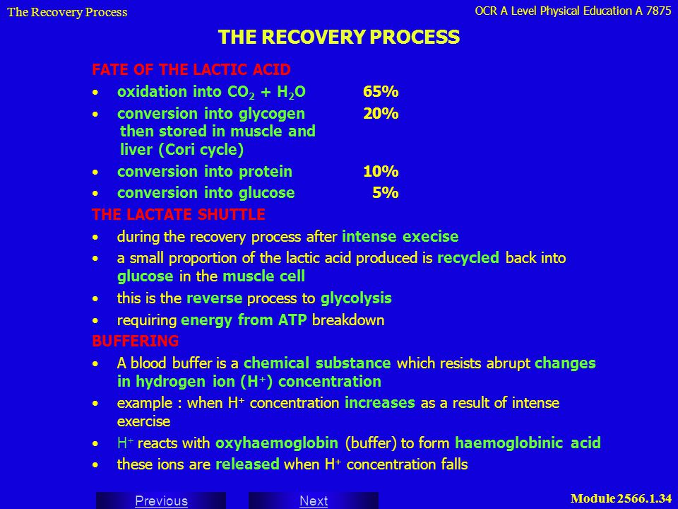 OCR A Level Physical Education A 7875 Next Previous Module 2566.1.34 THE RECOVERY PROCESS The Recovery Process FATE OF THE LACTIC ACID oxidation into
