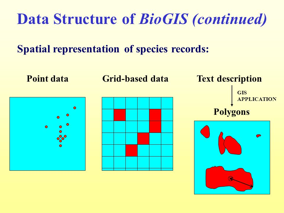 Point data Grid-based data Text description Data Structure of BioGIS (continued) Spatial representation of species records: Polygons GIS APPLICATION