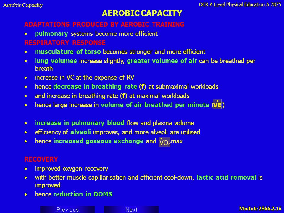 OCR A Level Physical Education A 7875 Next Previous Module 2566.2.16 AEROBIC CAPACITY Aerobic Capacity ADAPTATIONS PRODUCED BY AEROBIC TRAINING pulmon