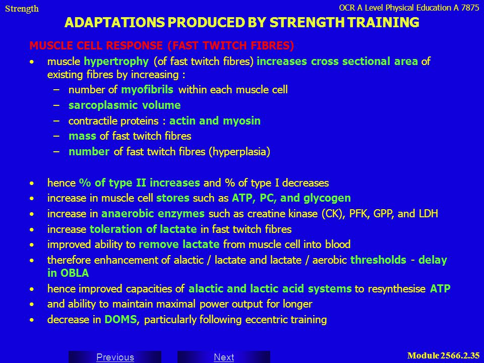 OCR A Level Physical Education A 7875 Next Previous Module 2566.2.35 ADAPTATIONS PRODUCED BY STRENGTH TRAINING Strength MUSCLE CELL RESPONSE (FAST TWI