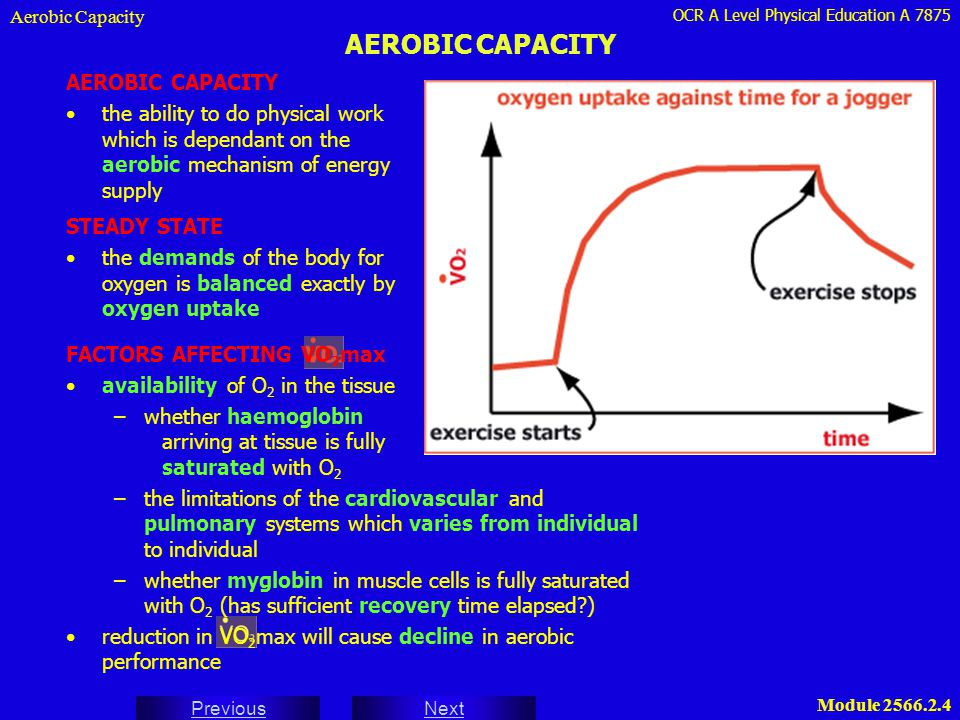 OCR A Level Physical Education A 7875 Next Previous Module 2566.2.4 AEROBIC CAPACITY Aerobic Capacity AEROBIC CAPACITY the ability to do physical work