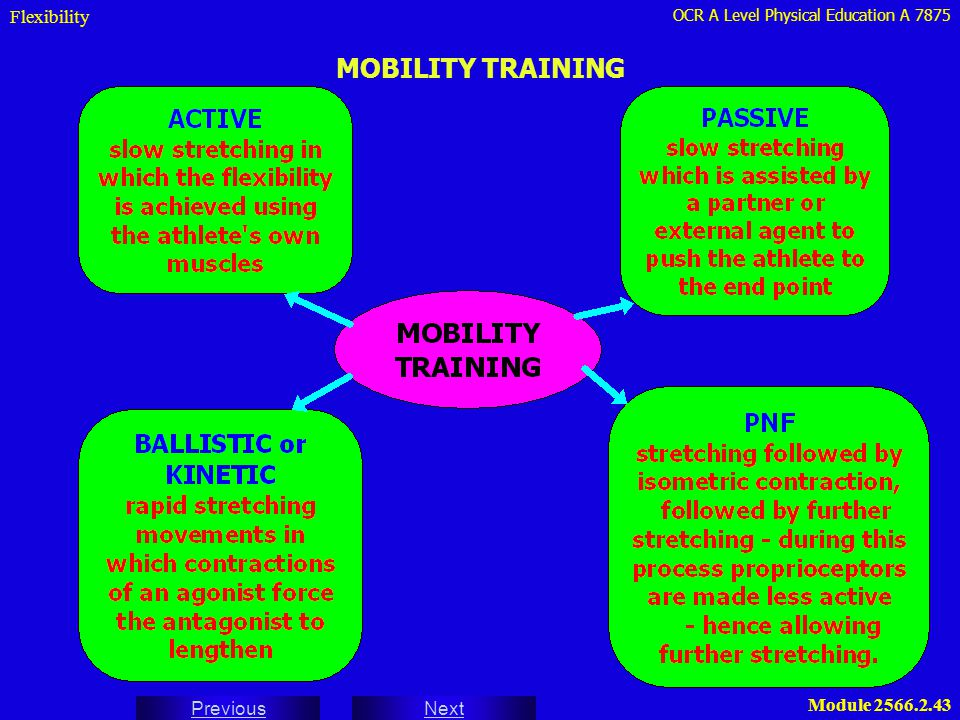 OCR A Level Physical Education A 7875 Next Previous Module 2566.2.43 MOBILITY TRAINING Flexibility