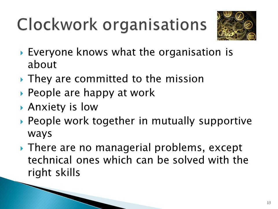  Everyone knows what the organisation is about  They are committed to the mission  People are happy at work  Anxiety is low  People work together in mutually supportive ways  There are no managerial problems, except technical ones which can be solved with the right skills 15