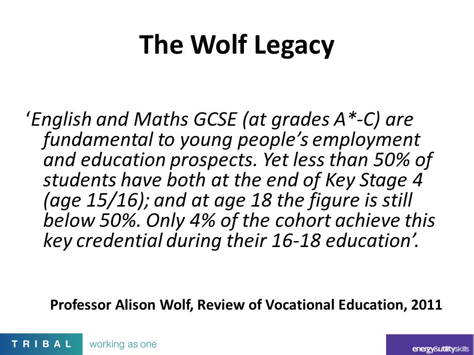 The Wolf Legacy 'English and Maths GCSE (at grades A*-C) are fundamental to young people's employment and education prospects. Yet less than 50% of st