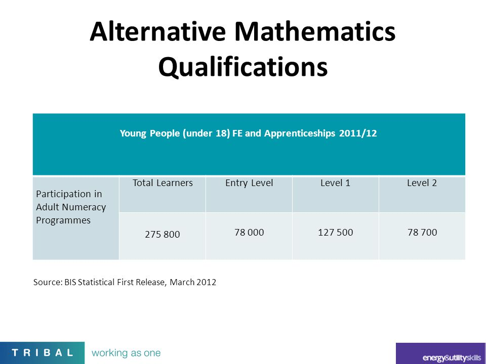 Alternative Mathematics Qualifications Young People (under 18) FE and Apprenticeships 2011/12 Participation in Adult Numeracy Programmes Total Learner