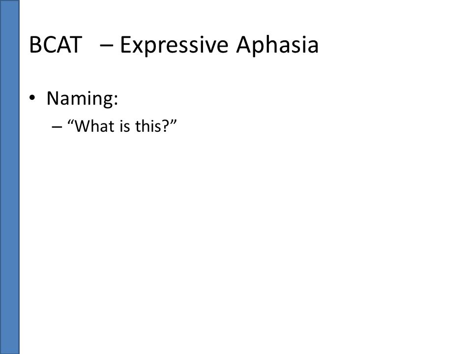 "BCAT – Expressive Aphasia Naming: – ""What is this?"""