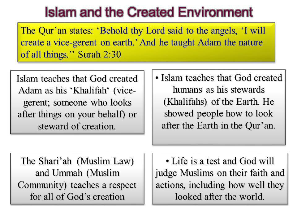 The Qur'an states: 'Behold thy Lord said to the angels, 'I will create a vice-gerent on earth.' And he taught Adam the nature of all things.'' Surah 2