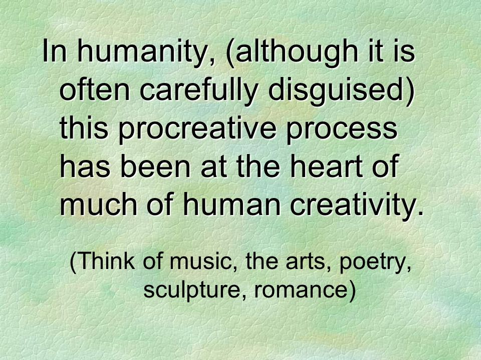 In humanity, (although it is often carefully disguised) this procreative process has been at the heart of much of human creativity.
