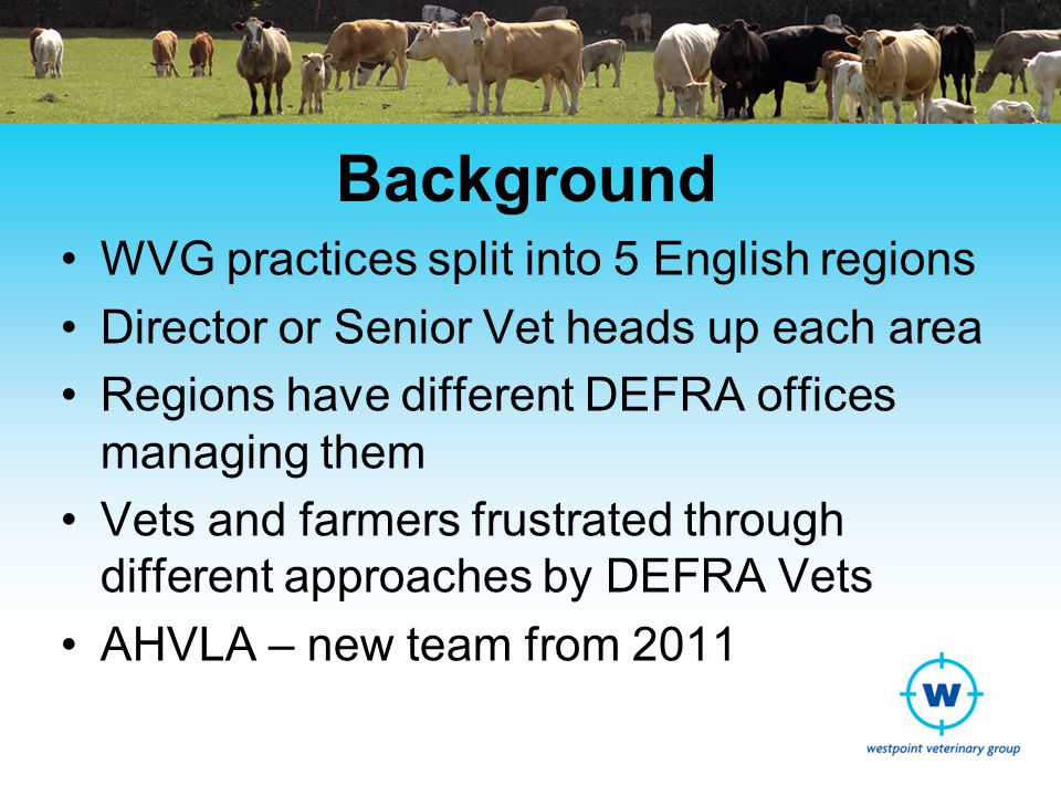 Background WVG practices split into 5 English regions Director or Senior Vet heads up each area Regions have different DEFRA offices managing them Vets and farmers frustrated through different approaches by DEFRA Vets AHVLA – new team from 2011