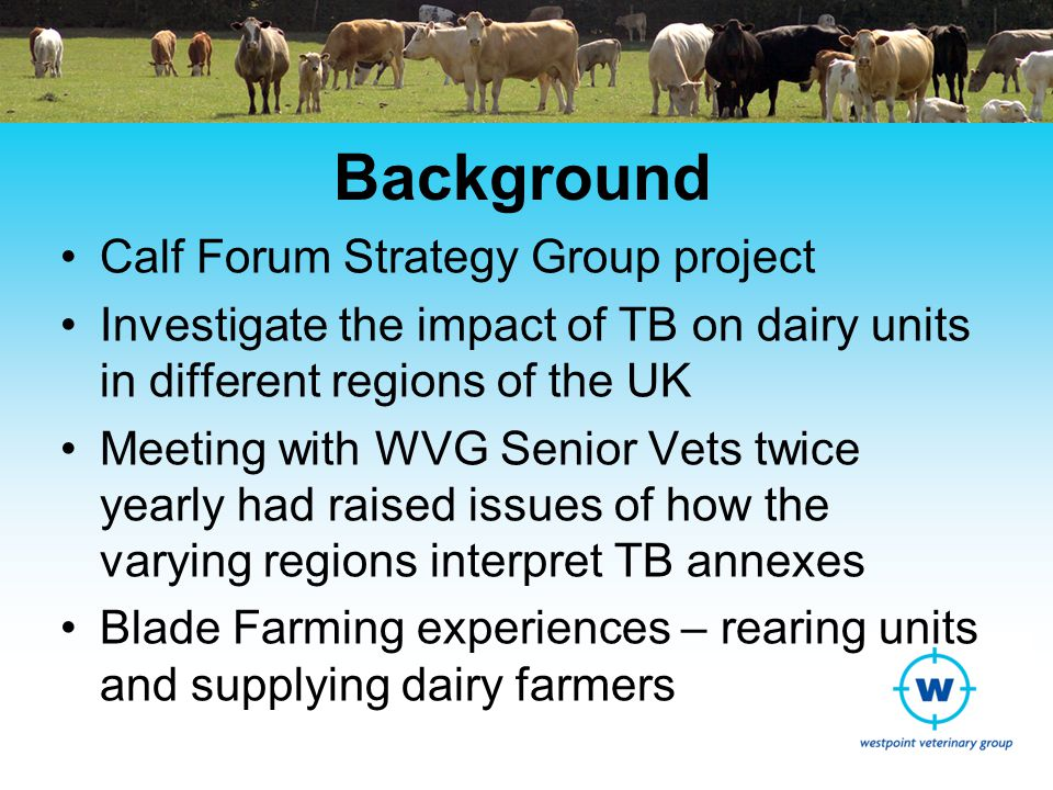 Background Calf Forum Strategy Group project Investigate the impact of TB on dairy units in different regions of the UK Meeting with WVG Senior Vets twice yearly had raised issues of how the varying regions interpret TB annexes Blade Farming experiences – rearing units and supplying dairy farmers