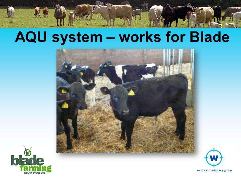 AQU system – works for Blade