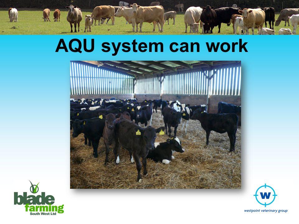 AQU system can work